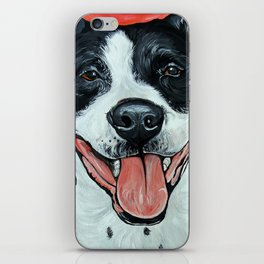 Black & White Adorable Pit Bull  iPhone Skin