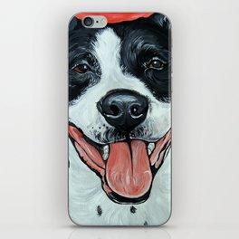 Black & White Adorable Pit Bull  iPhone Skin