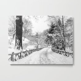 Central Park Winter Path in Shakespeare Garden Metal Print