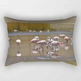 Chilean Flamingo (Phoenicopterus chilensis) Rectangular Pillow