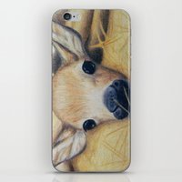 bambi iPhone & iPod Skins featuring Bambi by Erin Schamberger