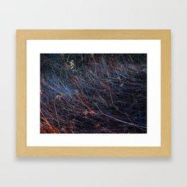 Winter Grass 2 Framed Art Print
