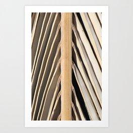 Textura: Dried Palm Frond Art Print