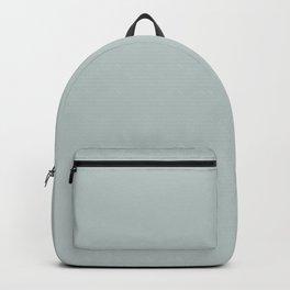 Sky Gray // Pantone 14-4504 TPX Backpack