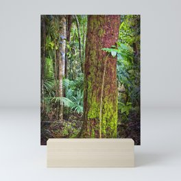 New and old rainforest growth Mini Art Print