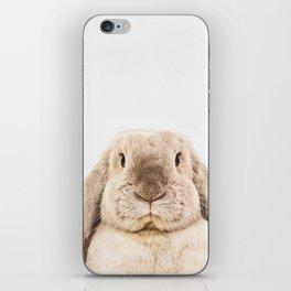 Bunny Rabbit iPhone Skin