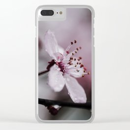 Cherry Blawesome Clear iPhone Case