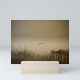 Flying Solo Mini Art Print