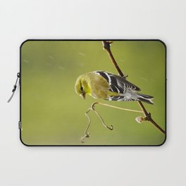 American Goldfinch Laptop Sleeve