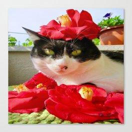 Khoshek queen of flowers Canvas Print