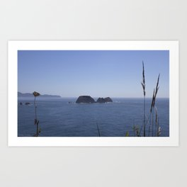 three arches from cape meares Art Print