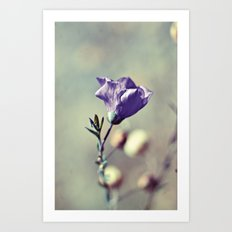 Purple Flower III Art Print