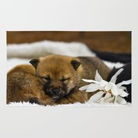 shiba inu Area & Throw Rugs featuring Red Shiba Inu Puppy by Blue Lightning Creative