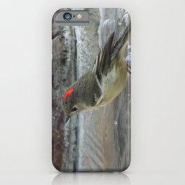 Ruby-Crowned Kinglet At The Fountain iPhone Case