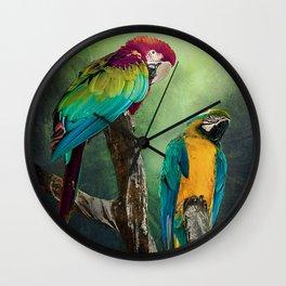 Macaw's Siesta time Wall Clock
