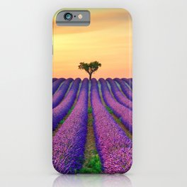 Tree and Lavender Fields at Sunset iPhone Case