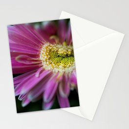 Happy Pink Stationery Cards