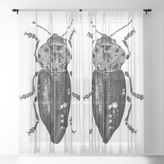 Beetle 11 Sheer Curtain