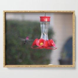 Hummingbird Feeder Serving Tray