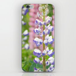 Lovely Lupines iPhone Skin