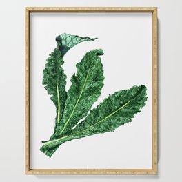 Lacinato Kale Serving Tray