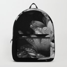 Flower and drops. Black and white. Backpack
