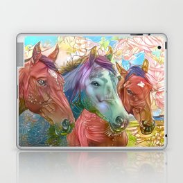Fairy Horses Laptop & iPad Skin