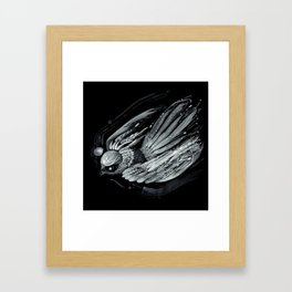 Flight in Midnight Framed Art Print