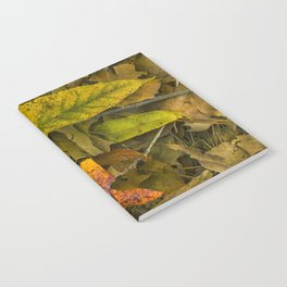 The Fall Collection Notebook
