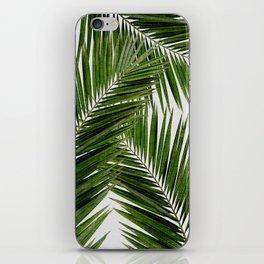 Palm Leaf III iPhone Skin