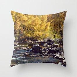 Eagle River in Avon Colorado Throw Pillow