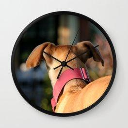 Lua Greyhound Wall Clock
