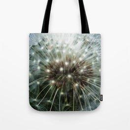 Mandolin 2.57 Tote Bag