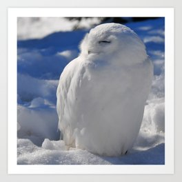 Snowy in the Snow by Teresa Thompson Art Print