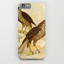 Vintage Print - The Birds of Australia (1891) - Radiated Goshawk / Australian Goshawk iPhone Case