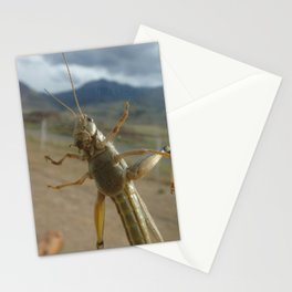 Gardner Grasshopper Stationery Cards
