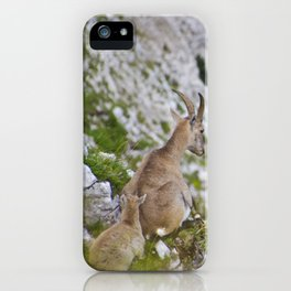 Ibex mother & baby iPhone Case