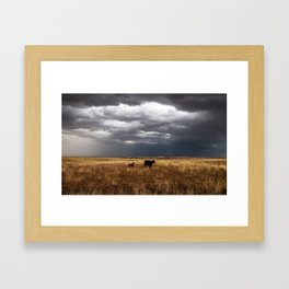 Life on the Plains - Cow Watches Over Playful Calf in Oklahoma Framed Art Print