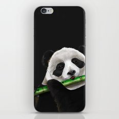 Panda Artjam iPhone & iPod Skin