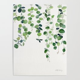 Eucalyptus Watercolor 2  Poster