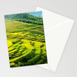 Viet Nam  Art Print, Sapa Rice Terrace, Paddy field, Wall Art Decor, Travel Poster, Fine Art Print Shop Stationery Cards