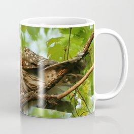 Barred owl mom and baby Coffee Mug