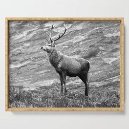 Stag b/w Serving Tray