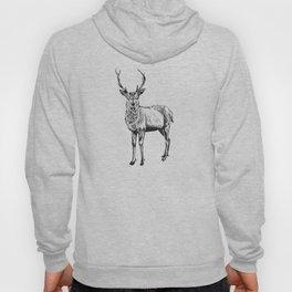 Deer illustration black and white Hoody