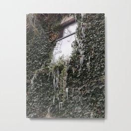 Icy Ivy Metal Print