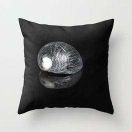 """Reflections"" -  Snail Shell Throw Pillow"