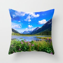 God's_Country - IV, Alaska Throw Pillow