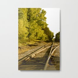 The paths we take.  Metal Print