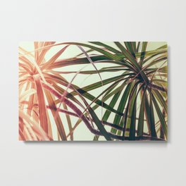 Window Plant Metal Print