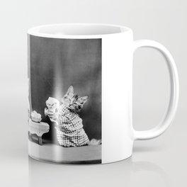 Kittens Washing Dishes - Harry Whittier Frees - 1914 Coffee Mug